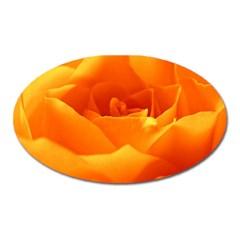 Rose Magnet (Oval)
