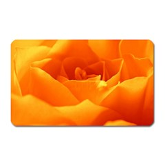 Rose Magnet (Rectangular)