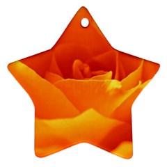 Rose Star Ornament (Two Sides)