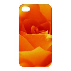 Rose Apple iPhone 4/4S Hardshell Case