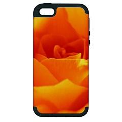 Rose Apple iPhone 5 Hardshell Case (PC+Silicone)