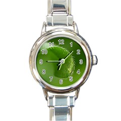 Leaf Round Italian Charm Watch