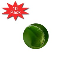 Leaf 1  Mini Button (10 pack)
