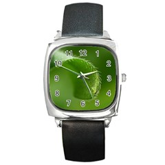 Leaf Square Leather Watch