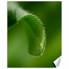 Leaf Canvas 16  X 20  (unframed)