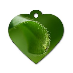 Leaf Dog Tag Heart (Two Sided)