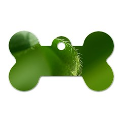 Leaf Dog Tag Bone (One Sided)