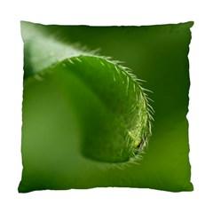 Leaf Cushion Case (Single Sided)