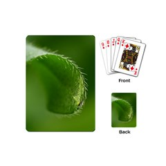 Leaf Playing Cards (Mini)
