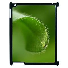 Leaf Apple iPad 2 Case (Black)