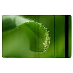 Leaf Apple Ipad 2 Flip Case