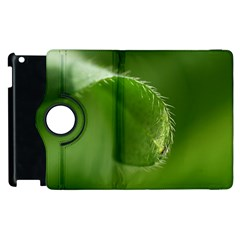 Leaf Apple Ipad 3/4 Flip 360 Case