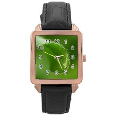Leaf Rose Gold Leather Watch