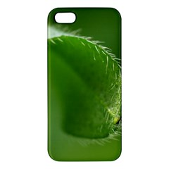 Leaf iPhone 5 Premium Hardshell Case