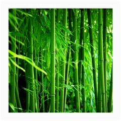 Bamboo Glasses Cloth (medium, Two Sided)