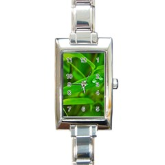 Bamboo Leaf With Drops Rectangular Italian Charm Watch