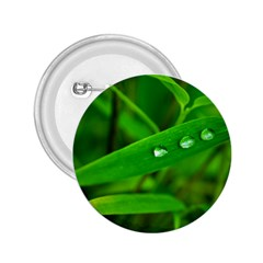 Bamboo Leaf With Drops 2.25  Button