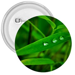 Bamboo Leaf With Drops 3  Button
