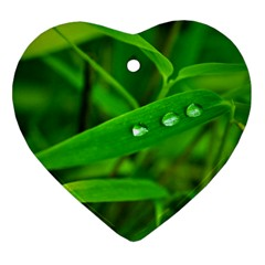 Bamboo Leaf With Drops Heart Ornament