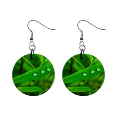 Bamboo Leaf With Drops Mini Button Earrings