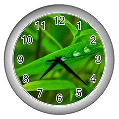 Bamboo Leaf With Drops Wall Clock (Silver)