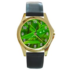Bamboo Leaf With Drops Round Metal Watch (gold Rim)