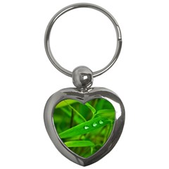 Bamboo Leaf With Drops Key Chain (Heart)