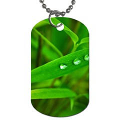 Bamboo Leaf With Drops Dog Tag (one Sided)
