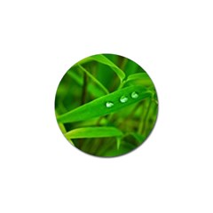 Bamboo Leaf With Drops Golf Ball Marker