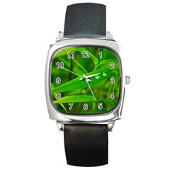 Bamboo Leaf With Drops Square Leather Watch