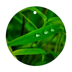 Bamboo Leaf With Drops Round Ornament (two Sides)