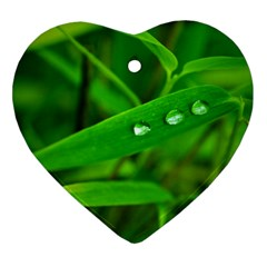 Bamboo Leaf With Drops Heart Ornament (Two Sides)