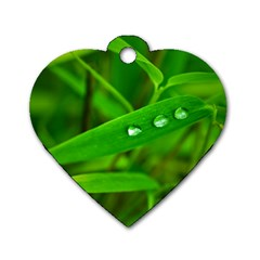 Bamboo Leaf With Drops Dog Tag Heart (one Sided)
