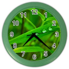 Bamboo Leaf With Drops Wall Clock (Color)