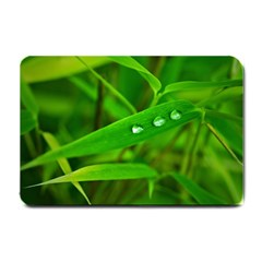 Bamboo Leaf With Drops Small Door Mat