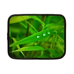Bamboo Leaf With Drops Netbook Case (Small)