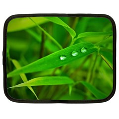 Bamboo Leaf With Drops Netbook Case (Large)