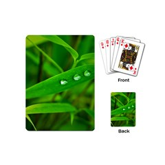 Bamboo Leaf With Drops Playing Cards (Mini)
