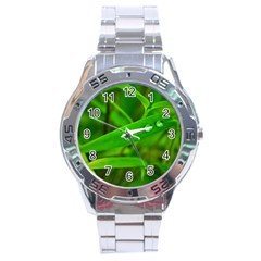 Bamboo Leaf With Drops Stainless Steel Watch (Men s)