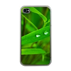 Bamboo Leaf With Drops Apple Iphone 4 Case (clear)
