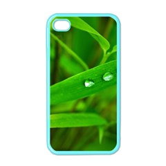 Bamboo Leaf With Drops Apple Iphone 4 Case (color)