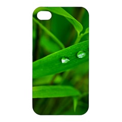 Bamboo Leaf With Drops Apple iPhone 4/4S Hardshell Case