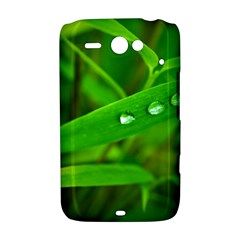 Bamboo Leaf With Drops HTC ChaCha / HTC Status Hardshell Case