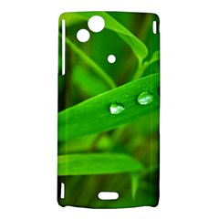Bamboo Leaf With Drops Sony Xperia Arc Hardshell Case