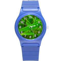 Bamboo Leaf With Drops Plastic Sport Watch (Small)