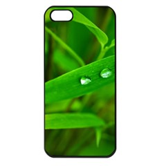 Bamboo Leaf With Drops Apple iPhone 5 Seamless Case (Black)