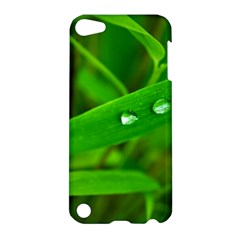Bamboo Leaf With Drops Apple Ipod Touch 5 Hardshell Case