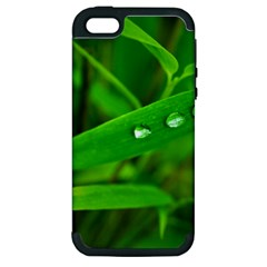 Bamboo Leaf With Drops Apple iPhone 5 Hardshell Case (PC+Silicone)