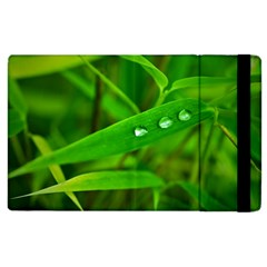 Bamboo Leaf With Drops Apple Ipad 2 Flip Case