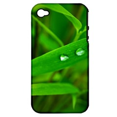 Bamboo Leaf With Drops Apple iPhone 4/4S Hardshell Case (PC+Silicone)